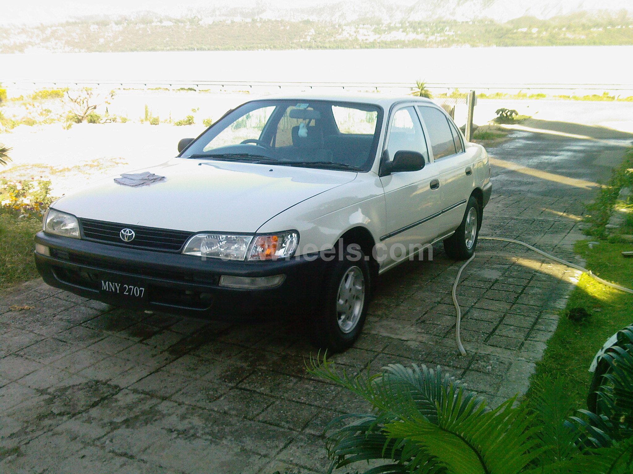 Toyota Corolla - 2001 fayaz Image-1